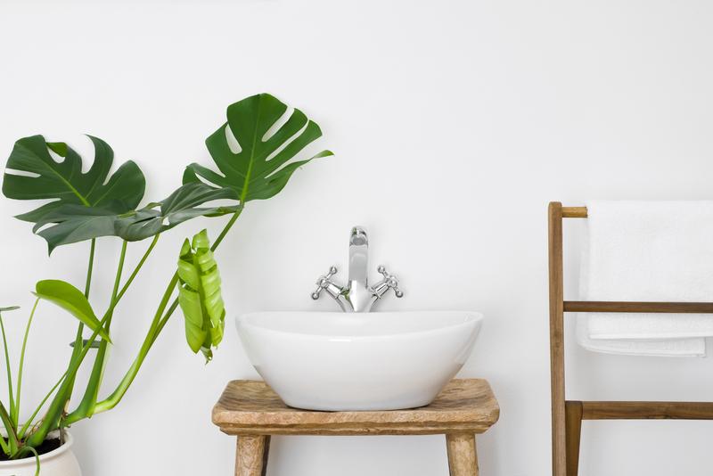 badkamerplanten