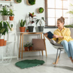 kamerplanten-tegen-stress