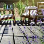 onderhoudsvrije-tuin