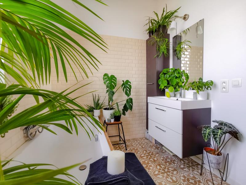 planten-in-je-badkamer
